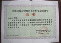 中国硅酸盐学会常务理事
